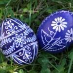 Česká a moravská vejce