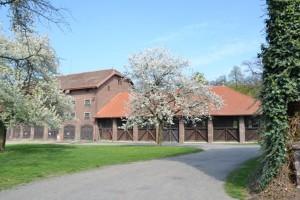 fotky jsou z května, proto ty stromy rozkvetlé