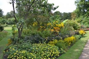 pohledy do zahrad podél řeky Cam