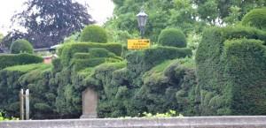 živé ploty ve Stratfordu