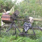 na loukách mezi jedntlivými vesnicemi jsme potkali kolo