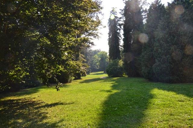na závěr pohled do večerní zámecké zahrady
