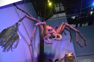 Figurína pavouka Aragoga ve skutečné velikosti. Ta byla hodně děsivá.