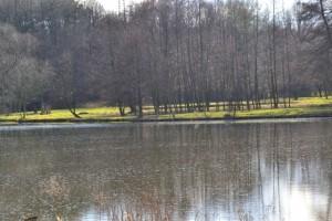 Okořský rybník